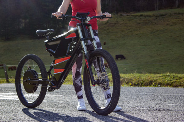 Grunner X electric bike